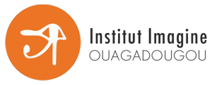Institut Imagine Ouagadougou
